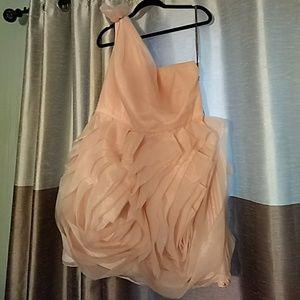 Formal Pale Pink Vera Wang Dress Sz 18
